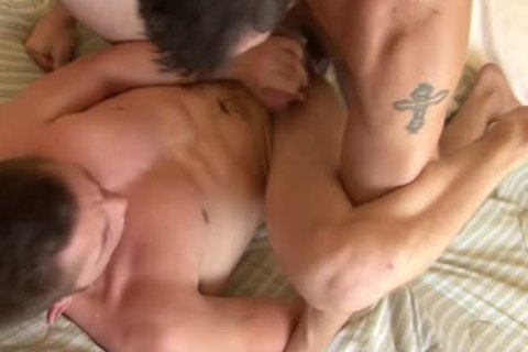 Tattooed homo acquires booty Smashed Well