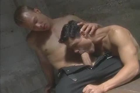 horny perfect Muscle Blond receives Serviced