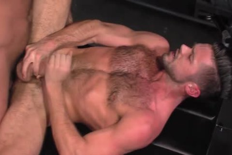 Hung Bear sucks his cum