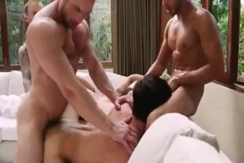 Breed That butthole - bare bunch sex 5