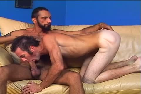 Two hairy males Randy And Tom Colt dril Each Other