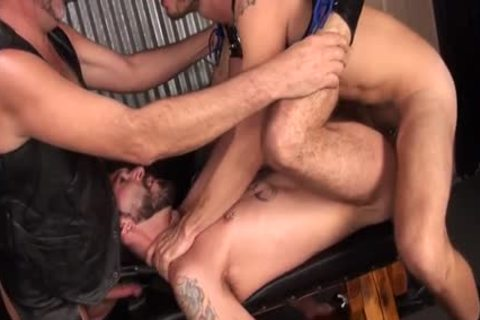 large 10-Pounder Bear three-some And ejaculation
