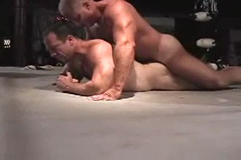 powerful Bear Wrestlers part II