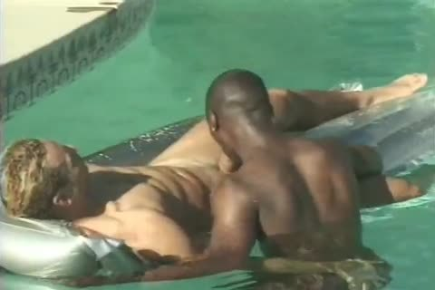 homo Interracial Cocksucking In The Pool