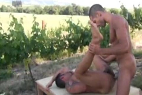Sex in the countryside