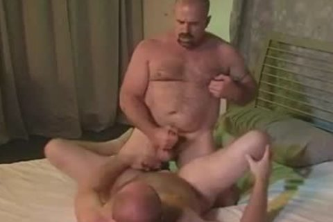 homo Bear wazoo Licking drilling And fellatio