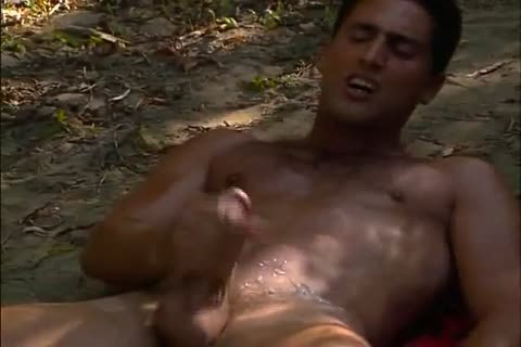 bawdy homo males Play And plough In Nature