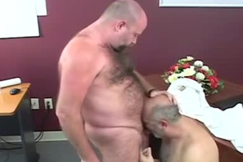 admirable-looking fat Bears plowing After Giving oral stimulation-stimulation-service