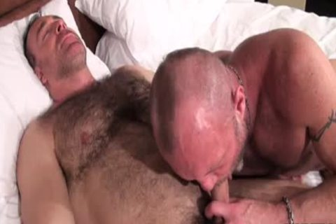 Lustful bears acquire messy with naked nailing