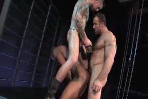 3 muscle sex live