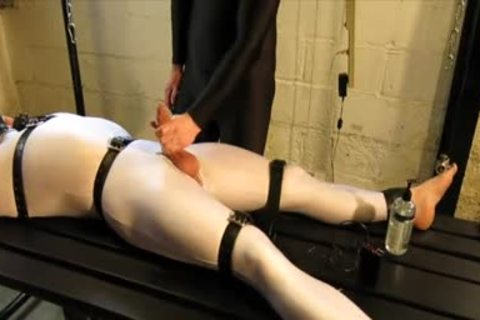 Our Live-in Pup Zathin Loooves To Be Tickled type-of. So We Put Him In smth Stretchy, belted Him Down, And Decided To watch How Much that man Could Take! In Part 1, We Added A Sound-activated Electro Plug Just To Keep Things Interesting. Here In P