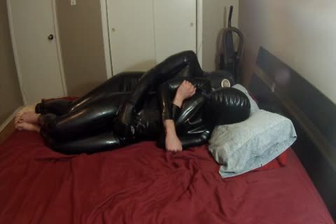 Two Pups Having Some Rubbery enjoyment.