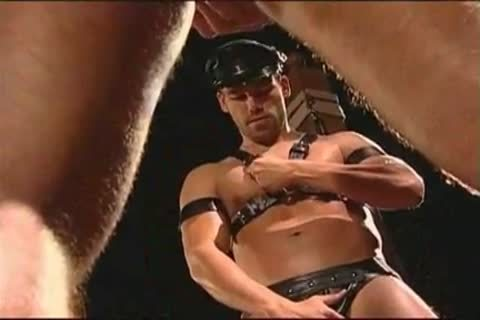 homo Leather Muscle