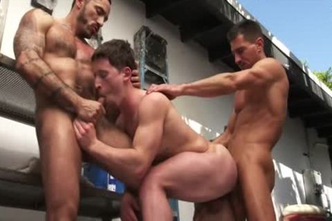 Alessio Romero, David Anthony, Will Parker!