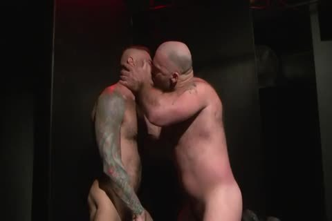 raw Bears And stripped men Scene 4