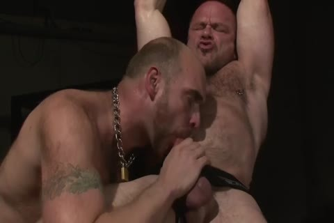 Video gay sex hd