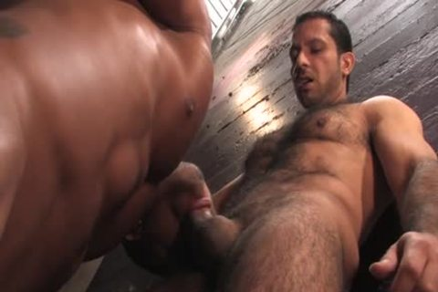 hairy homosexual ass And cumshot
