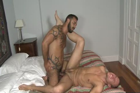 European Bear oral-service stimulation And ejaculation