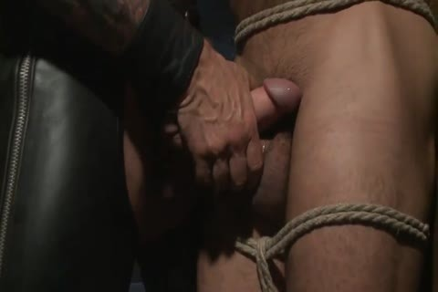 Daddy large knob Leather dream
