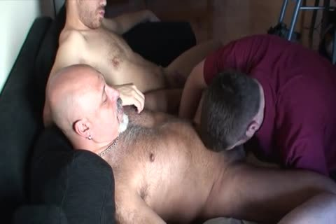 chubby group-sex group sex Bear Daddies