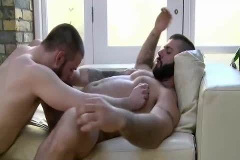 4-11 7 lusty Daddy Bears