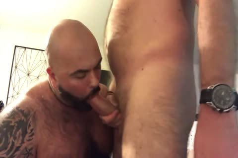 beefy Bear fellatio-job