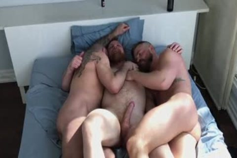Three Bears Nailing bare