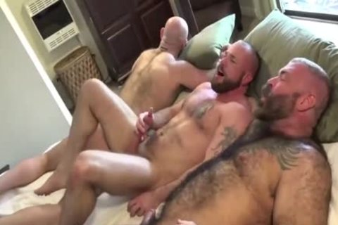 HubxDaddy Three beefy Bears boning ass