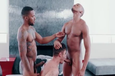 My superlatively nice males Trent King, Aaron Reese, Beau Reed