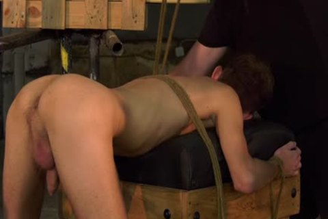 unrepining twink Jay Mc Dally Restrained For bdsm castigation