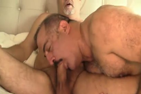 Two sleazy Daddy Bears homosexual Sex